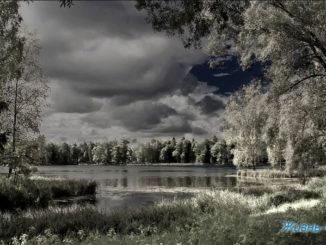 Фотокартины Художника из Санкт-Петербурга Дмитрия Графова