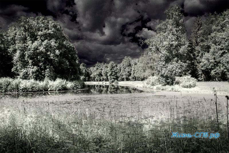 Русские пейзажи Дмитрия Графова