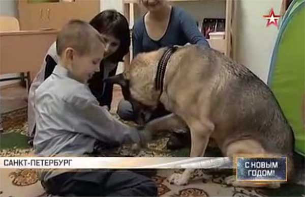 Собака терапевт в коррекционной школе Петербурга