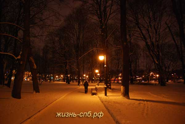 Михайловский сад - зимний Петербург