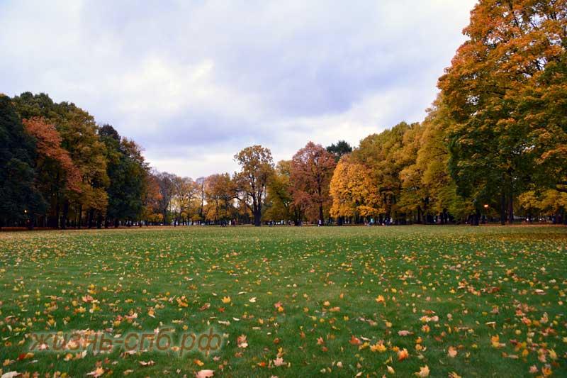 Осенний Михайловский парк