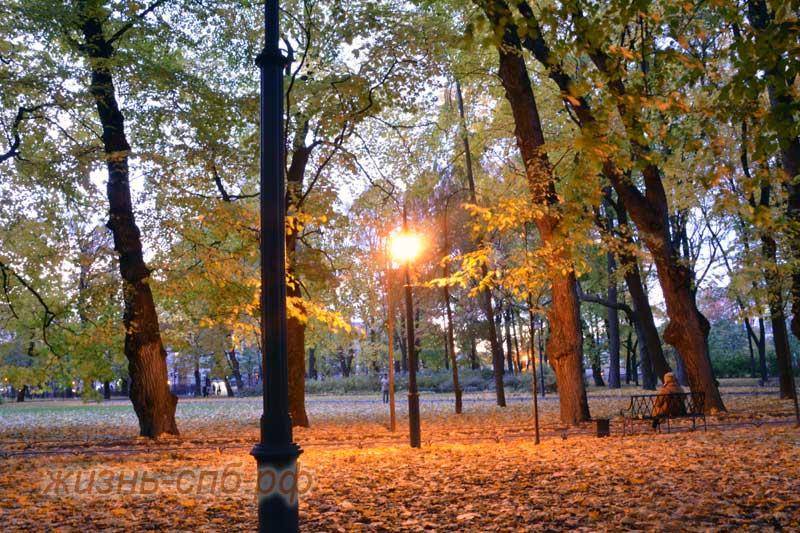 Сумерки в Михайловском саду