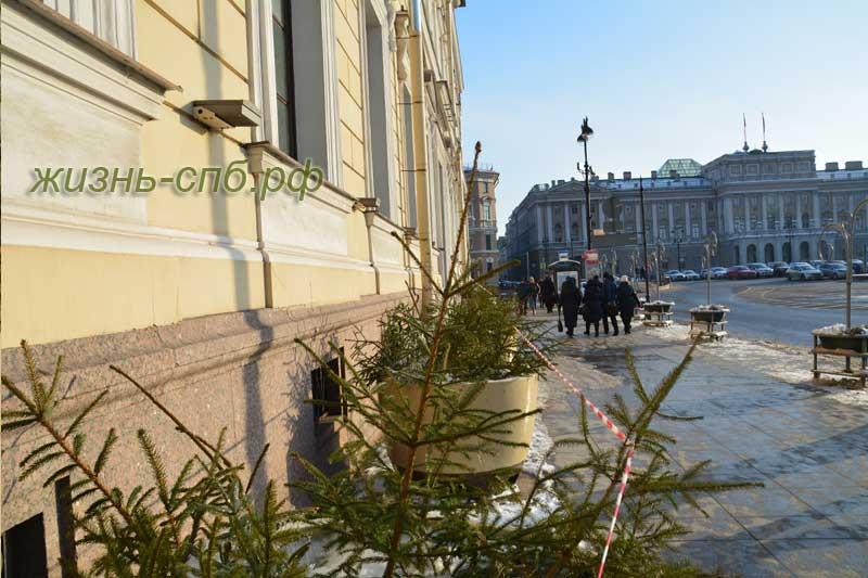 Большая Морская улица Петербурга, Институт Растениеводства имени Вавилова
