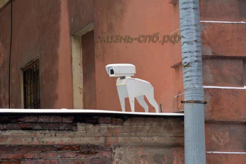 Камера видео наблюдения в форме собаки