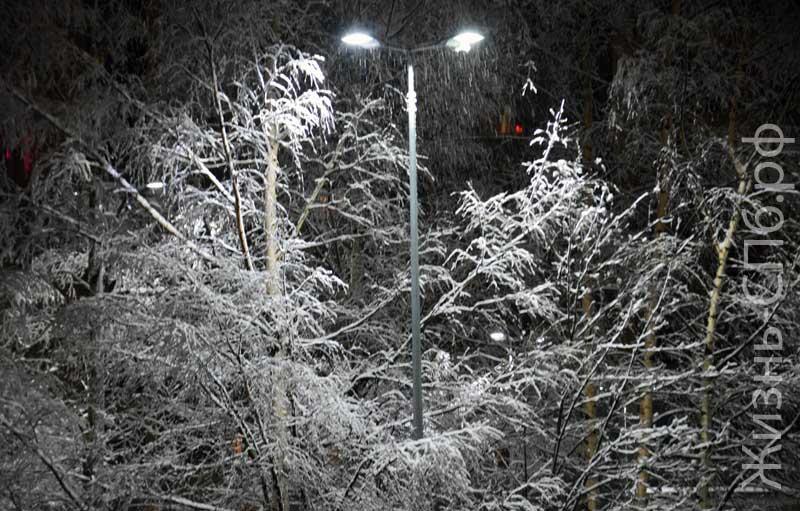 Ночной снегопад