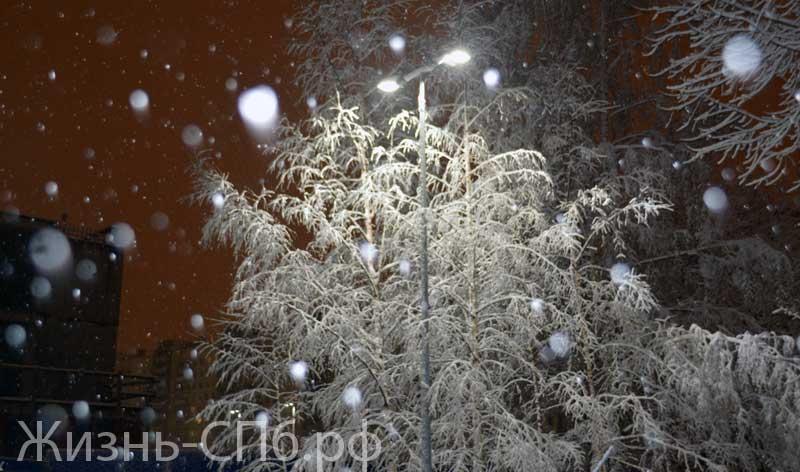 Снегопад в ночи