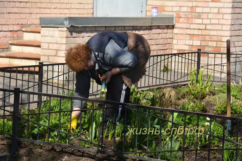 Старушка цветочница по дворе Петербурга выращивает цветы