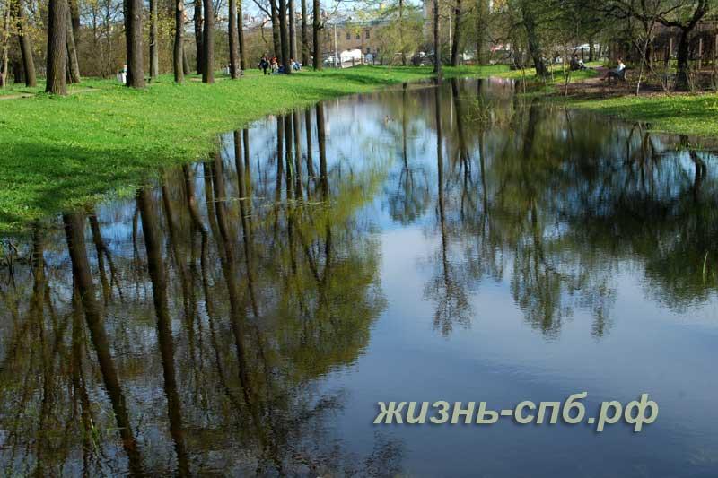Место отдыха на природе - тихий пруд в ботаническом саду Питера