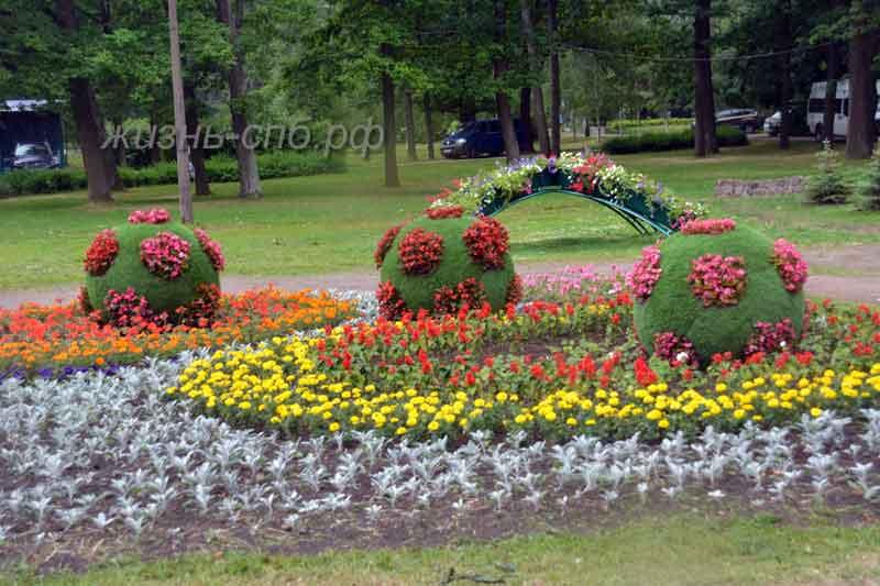 Цветочные клумбы на Крестовском острове