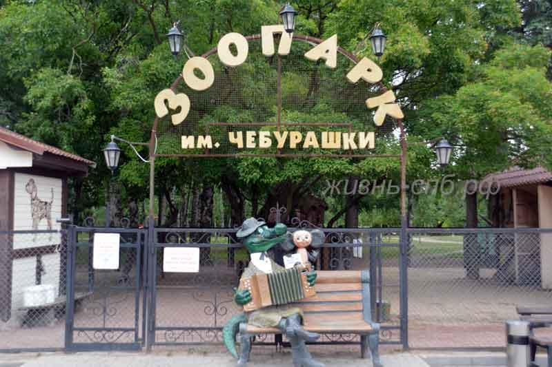 Зоопарк имени Чебурашки на Крестовском острове Петербурга