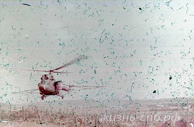 Окрестности Анапы. Обработка виноградников с воздуха. Архивные фото
