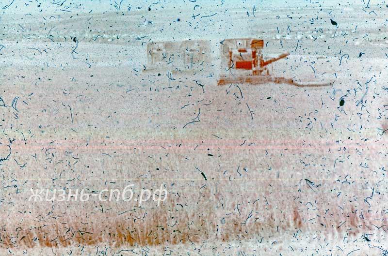 Одесская область. Уборка хлеба на полях Украины времен СССР